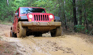 Mud Trail